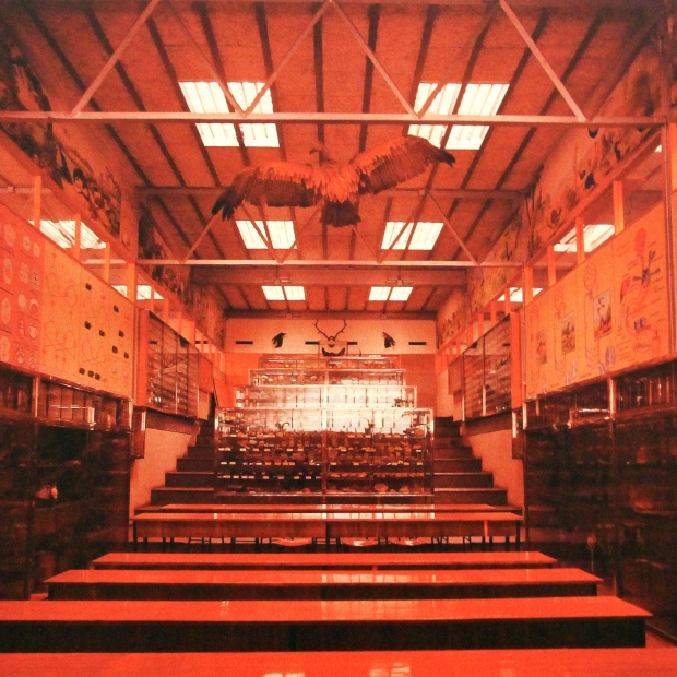 AUTOR: ALEJANDRO DE LA SOTA TÍTULO: Gimnasio del Colegio Maravillas, Madrid, 1960-1962 AÑO: s.d. TÉCNICA: Fotografía sobre dibond MEDIDAS: 36,1 x 43,7 cm