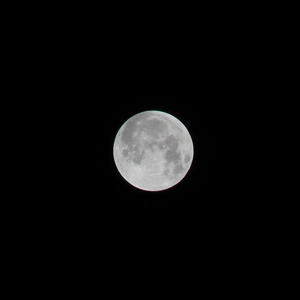 luna f15 s1-80 iso 100 135mm